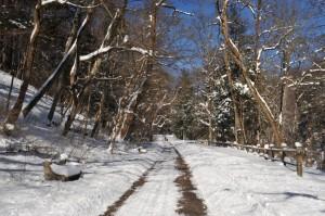 Winter Park Delaware